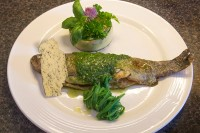 recept forel (14) (Custom)